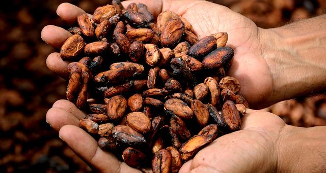 kakao v dlaních